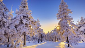germany-winter-landscape-widescreen-wide