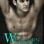 ARC Early Review: Windburn (Nightwing #2) by Juliette Cross