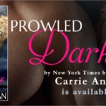 Release Day: Prowled Darkness (Dante's Circle, #7) by Carrie Ann Ryan ~ Excerpt/Giveaway