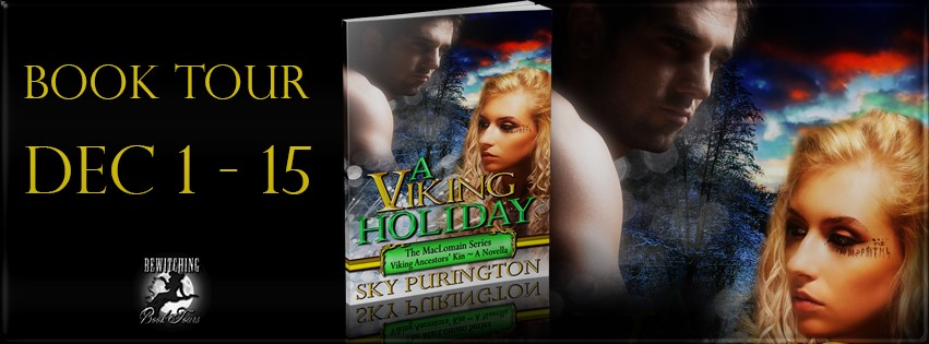 a-viking-holiday-banner-851-x-315